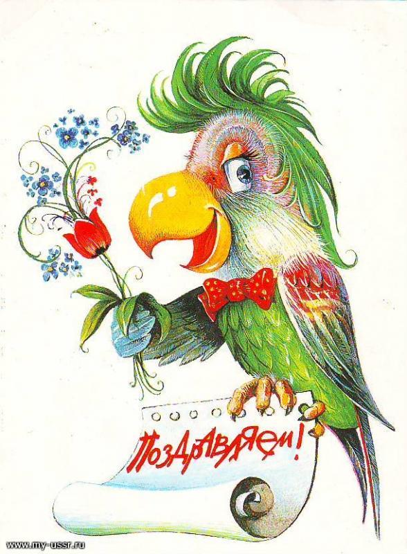 Открытка с днем рождения с попугаем