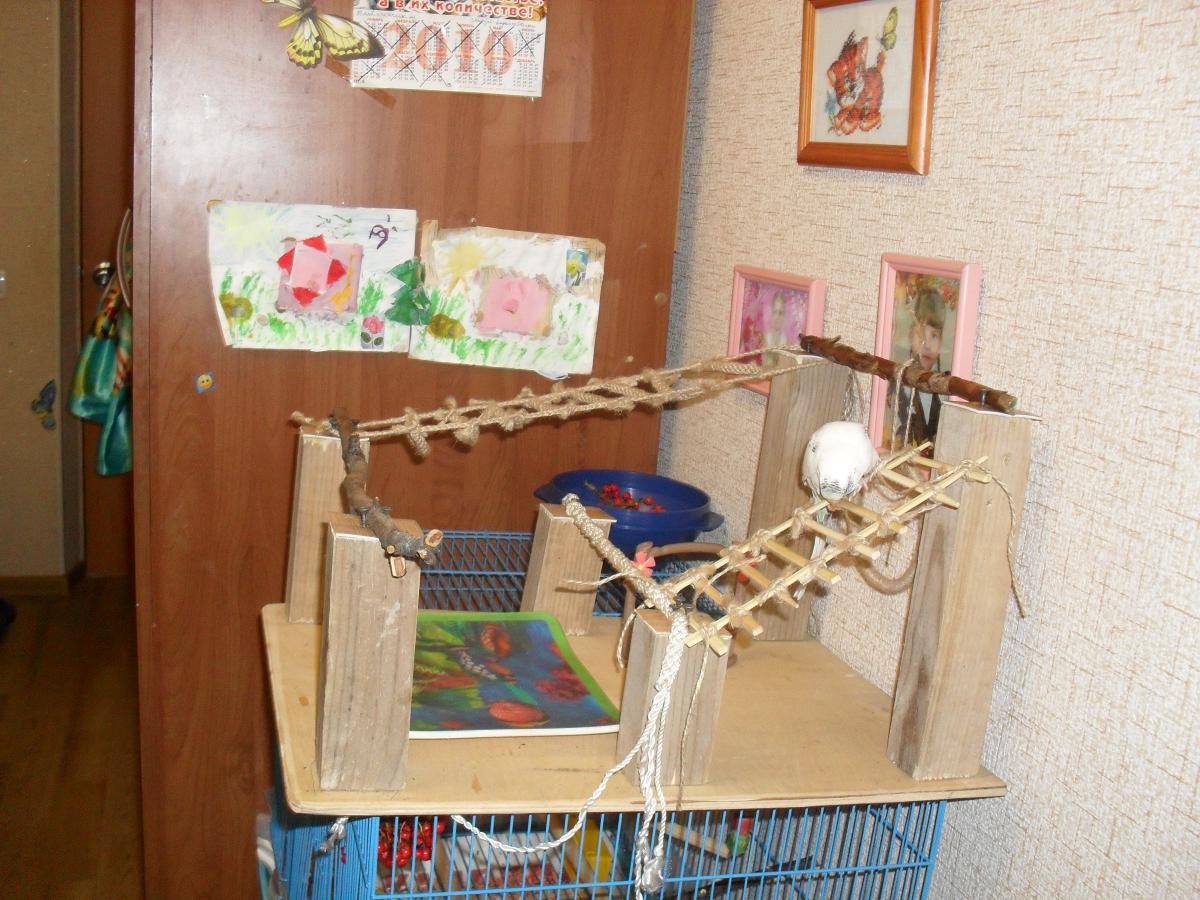 Лестница для попугаев своими руками
