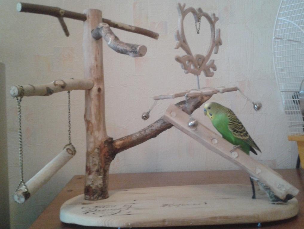 Игрушка попугаям своими руками