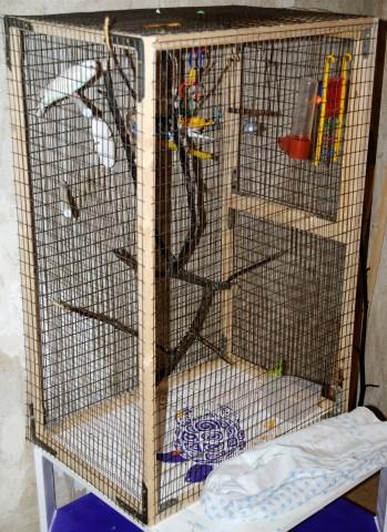Сделать клетку для попугая своими руками