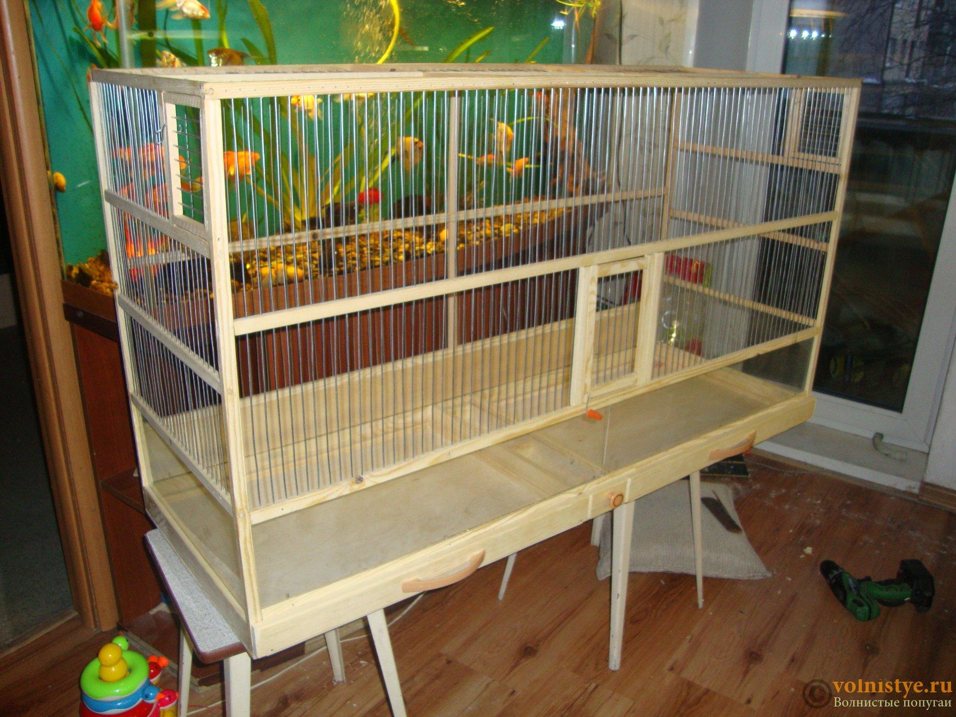 Как сделать клетку для попугая своими руками в домашних условиях