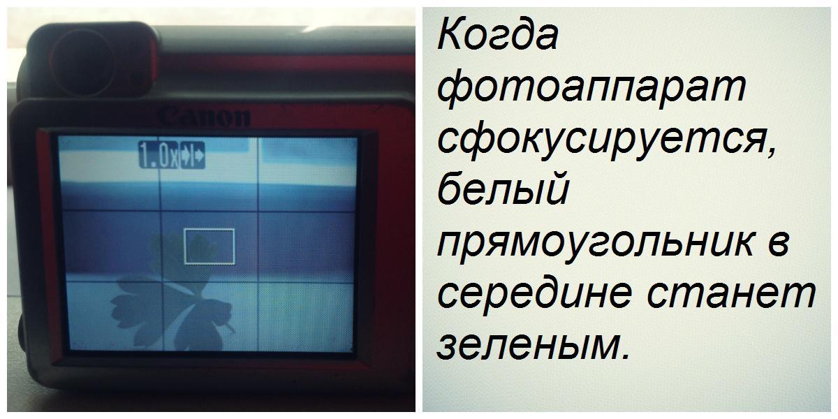 О фокусе - collage1.jpg