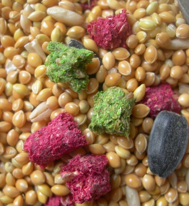 Видимо витамины такие - с красителем )) - Витамины.JPG