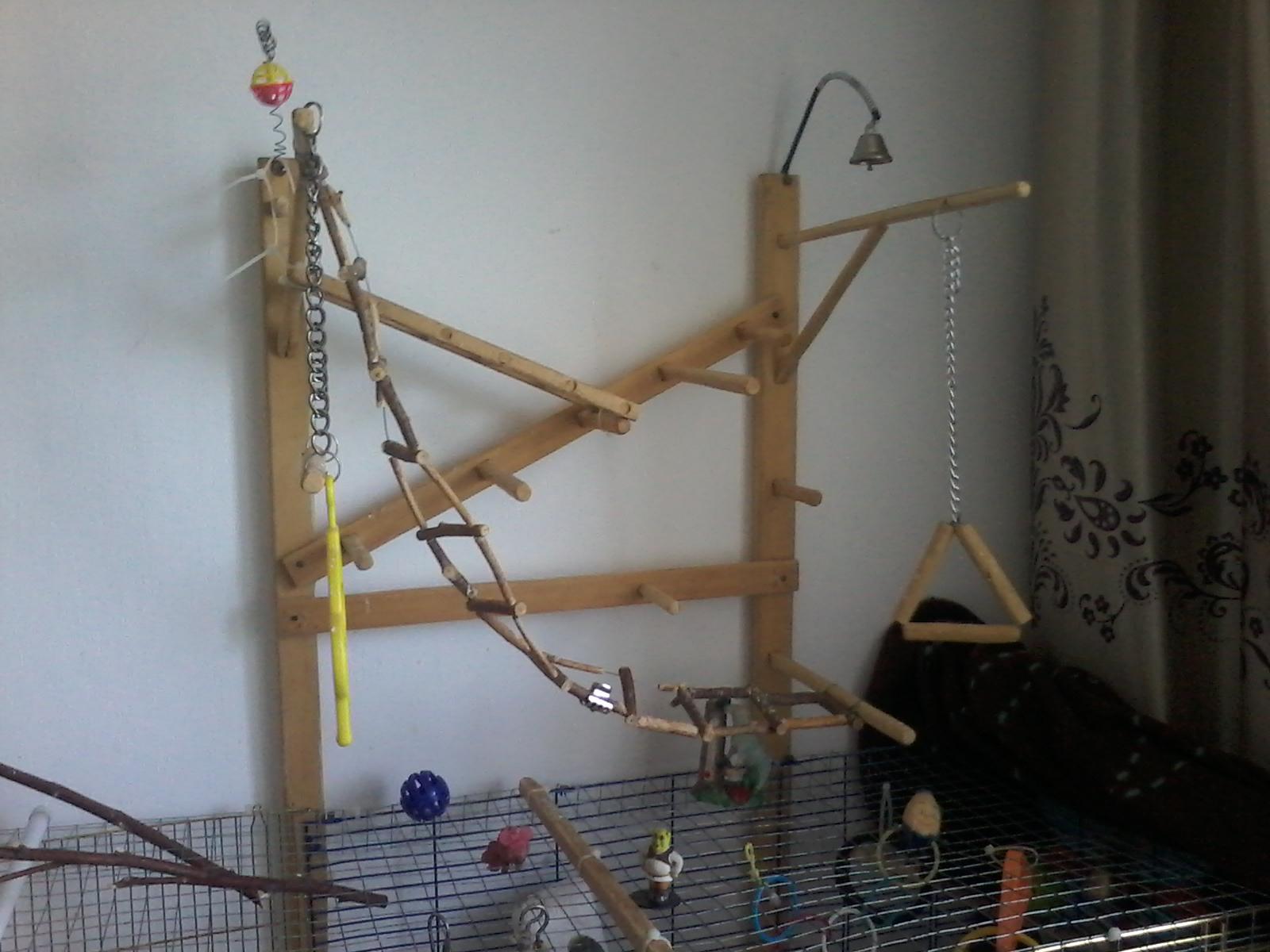 Игровые стенды для попугаев своими руками 28