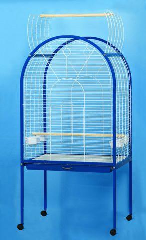 Посоветуйте, приобретение нового попугая - 528b48d8897b4.jpg