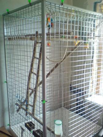 Вольер попугаев своими руками