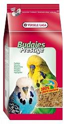 Выбираем лучший корм для волнистого попугая. - 4c3e3ed5eaf362f9364b620d1542ab57.jpg