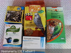 Необходимые продукты для волнистого попугая в период линьки. - Необходимые продукты для волнистого попугая в период линьки.jpg