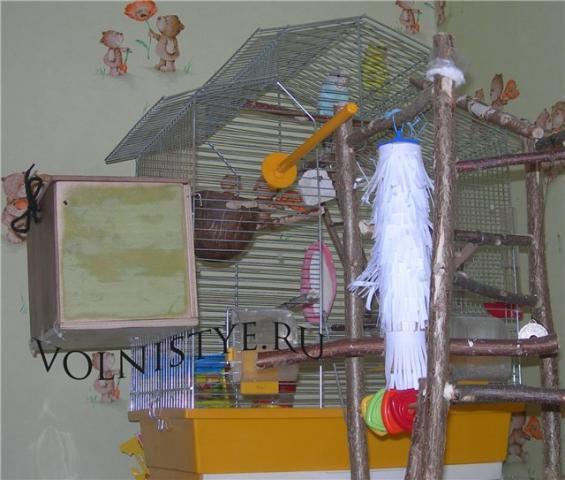 Домиком для гнездования можно пользоваться. - готовый домик.jpg
