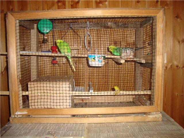 Как сделать клетку для попугаев фото