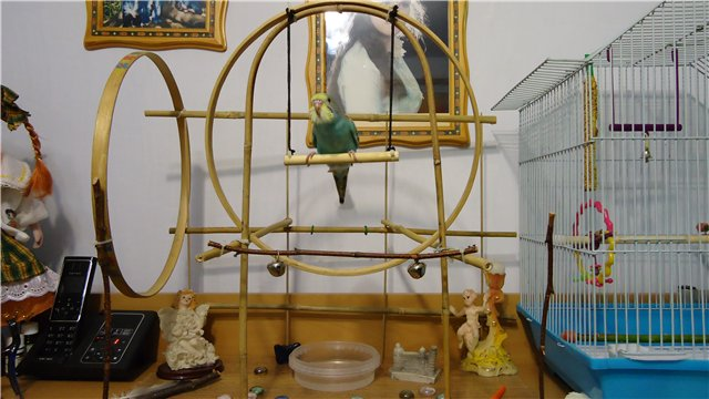 Игрушки для попугая Форумы о попугаях Parrots.ru