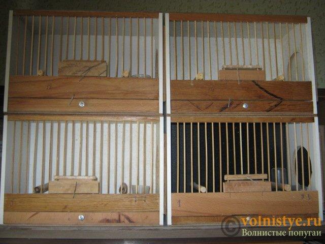 Продаются клетки б/у для кенара и лесной птицы. - IMG_9326.JPG
