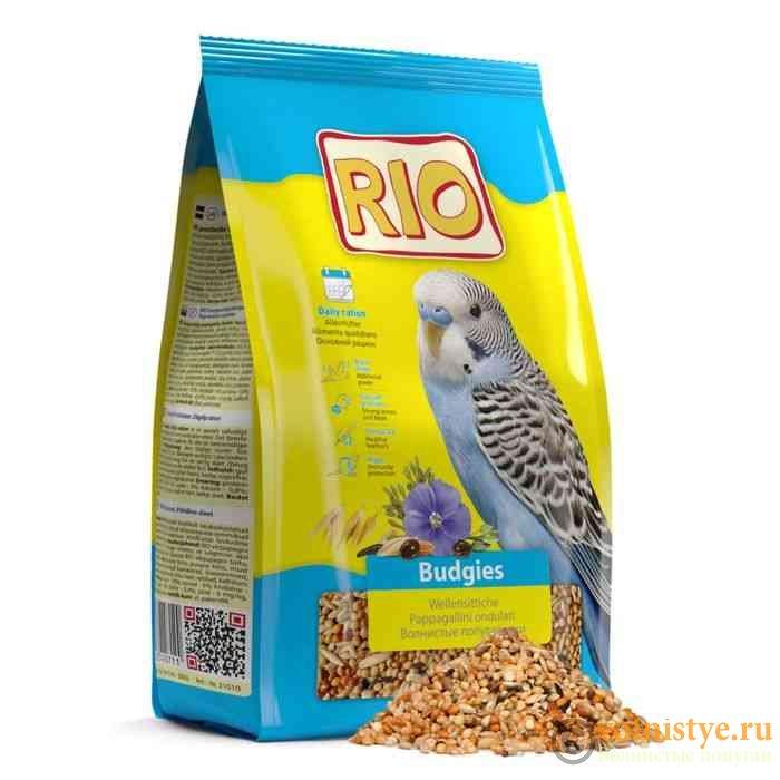 О кормах для попугаев - sl_2071125_0.jpg