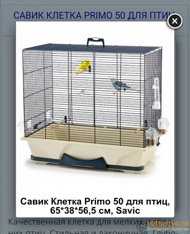 Клетки для попугаев -2 - Screenshot_20210126_224230.jpg