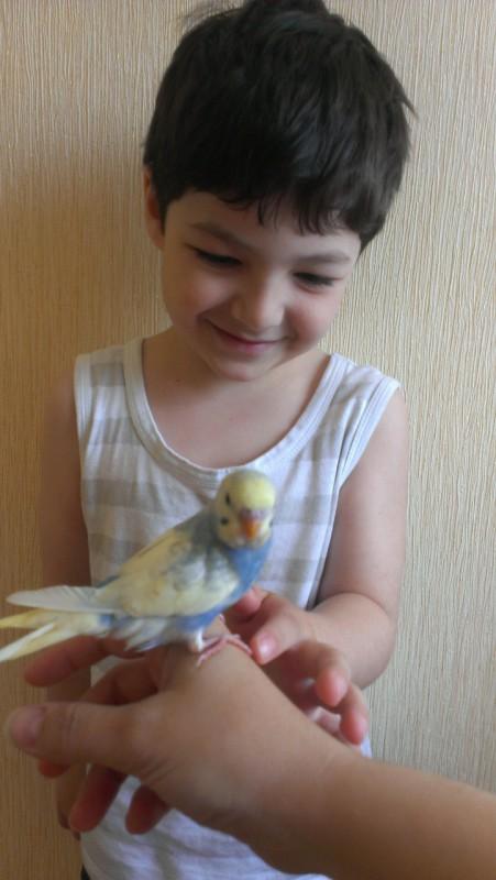 моя птичка счастья! - IMAG5247.jpg