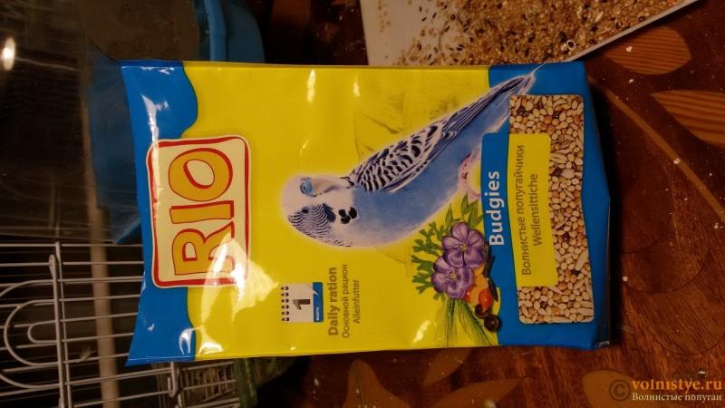 Выбираем лучший корм для волнистого попугая. - 20160412_212133.jpg
