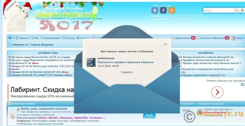 Дизайн - сайт.jpg
