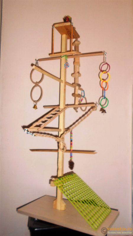 Игровая площадка для волнистого попугая своими руками - DSCN1328 (2).JPG