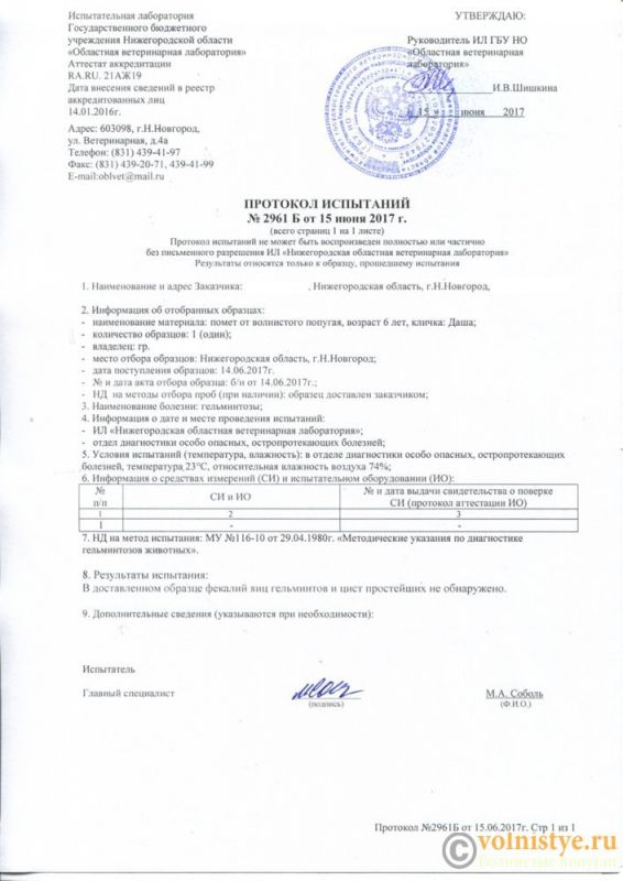 Понос-запор - IMG_1862.JPG