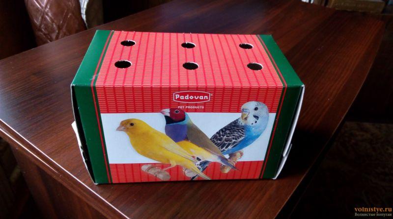 картонная переноска для птиц - IMG_20170830_080405.jpg