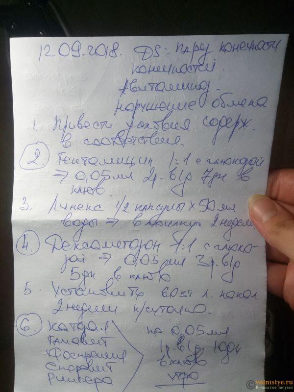 Назначения первого орнитолога - Назначения 1.jpg