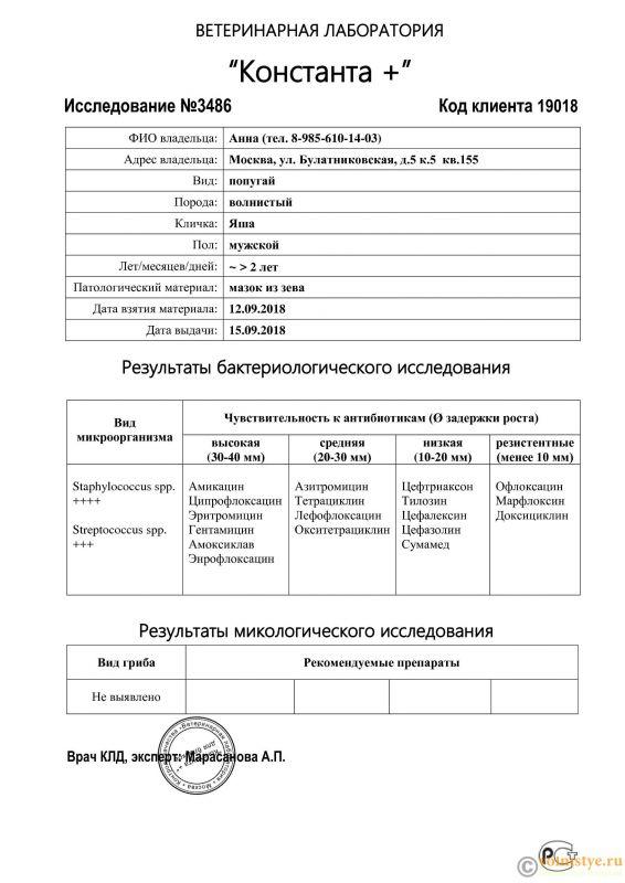 Анализы - 3486 (pdf.io).jpg