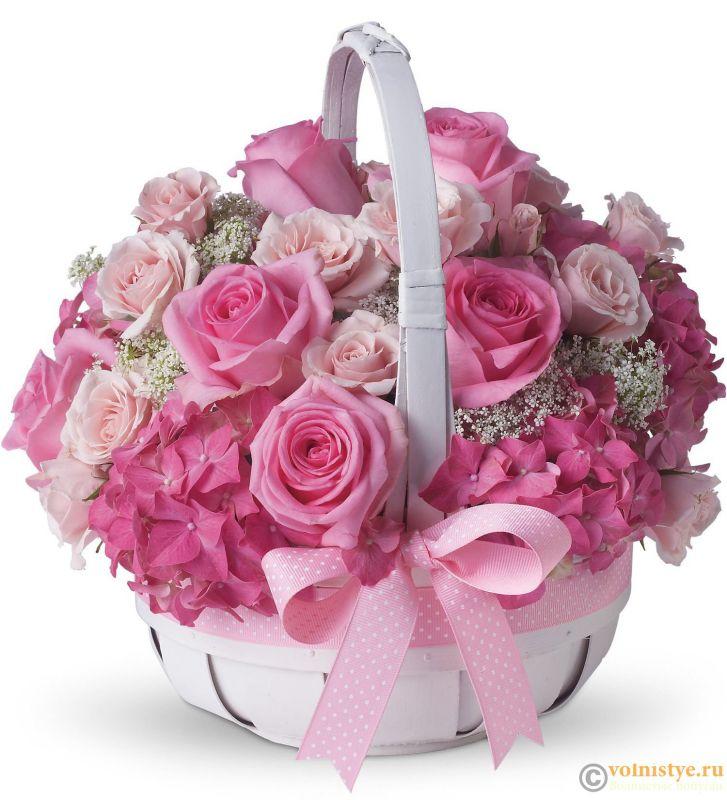Поздравляем Елену Allona с Днем Рождения! - АЛ.jpg