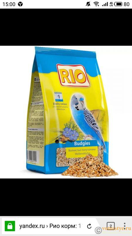 О кормах для попугаев - S81222-150035.jpg