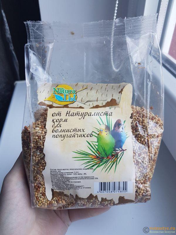 О кормах для попугаев - Q_mtWwLpz9Q.jpg