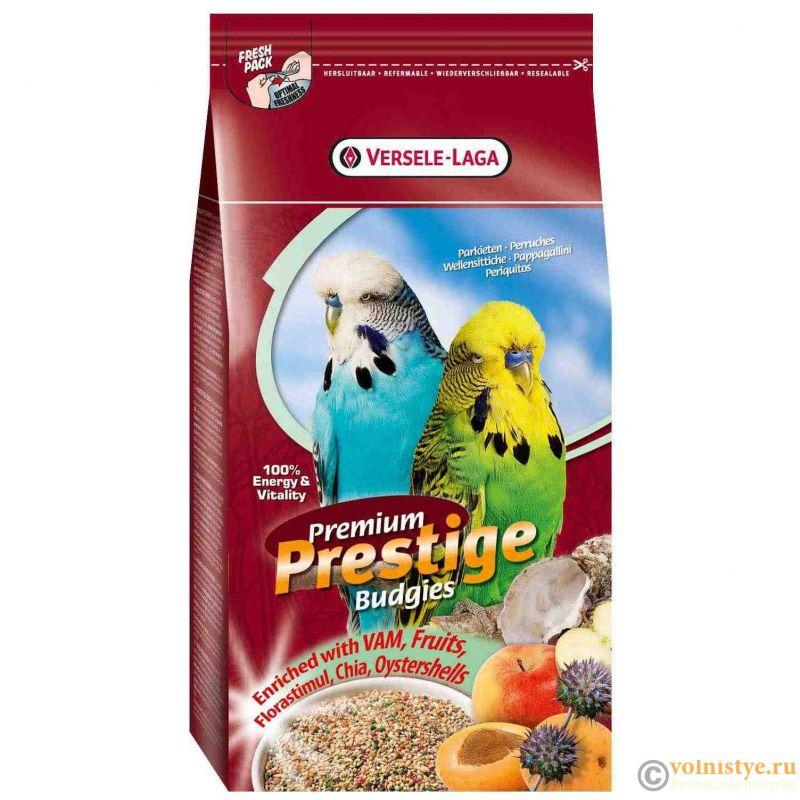О кормах для попугаев - 421688-e1524564087620.jpg