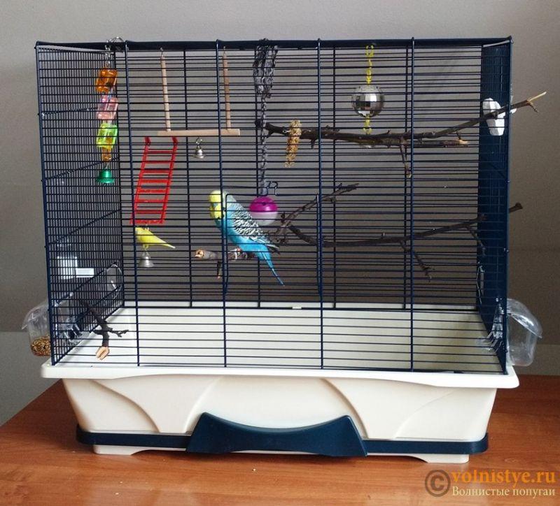Куки переехал в новый дом - 3.jpg