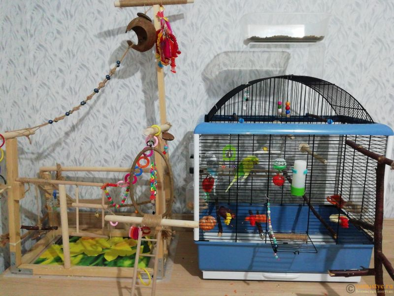 Уютное гнездышко моих птичек.. - IMG_2020_01_14_16_18_15_3908364156787220510028.jpg